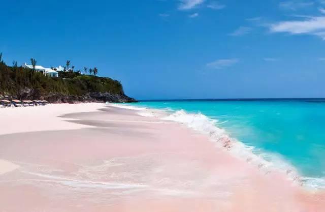 生活着幸福的猪们;更有神秘的亚特兰蒂斯天堂岛.