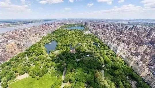 设计时借鉴了纽约中央公园 和伦敦海德公园的设计理念 打造了行云图片
