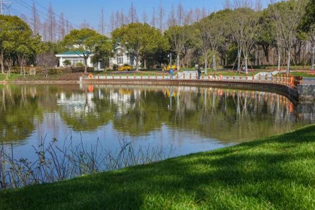 休闲好去处,来浦东这几处绝美公园走走吧丨爱申活暖心春