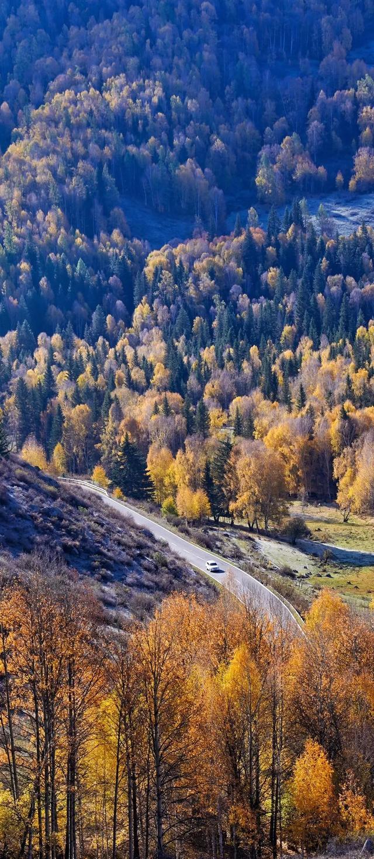 去一次等于环游欧洲,藏着最美秋天的旅行地,错过再等一年