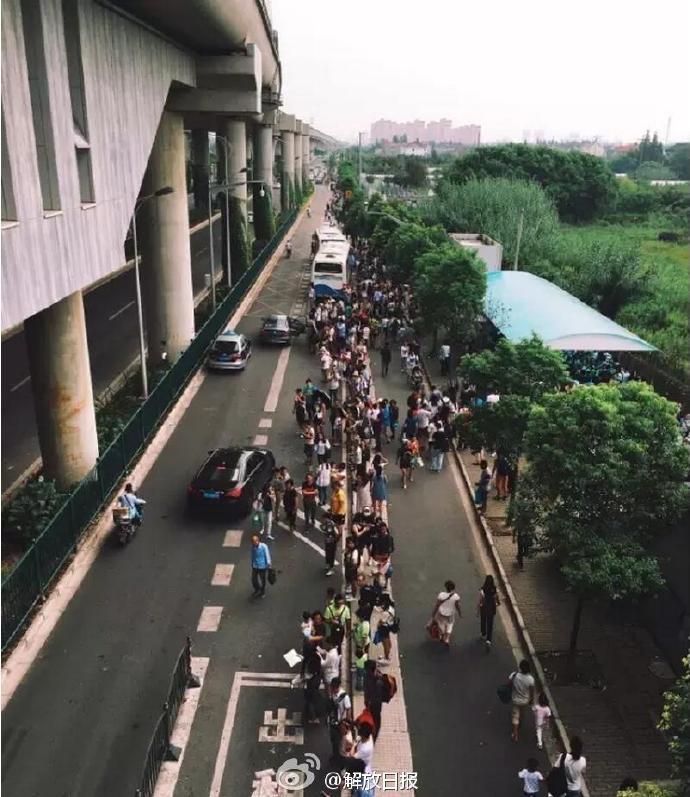 上海野生动物园沦陷了!周末,去上海野生动物园看动物?很抱歉,排队3小时,游玩30分钟!从出了地铁站开始,就开始了无止境的排队模式。动物园外短驳车排队,私家车排队,甚至有附近的住户把自家的小院当做停车场开始收费。