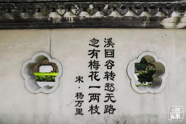 上海人家门口的江南园林!古韵幽香,一步一景皆风情!关键还免费