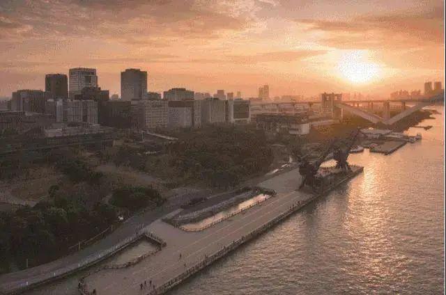 6座免费公园+22座望江驿,你还没有逛逛浦东滨江