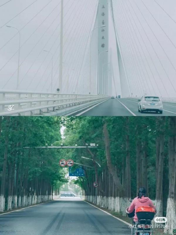 《【无极2娱乐怎么代理】上海这个区,凭颜值和实力上央视》