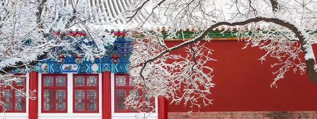 """《【无极2平台主管】99%上海宁还不知道!乘坐上海这些轨交线即可直达""""冰雪世界""""》"""
