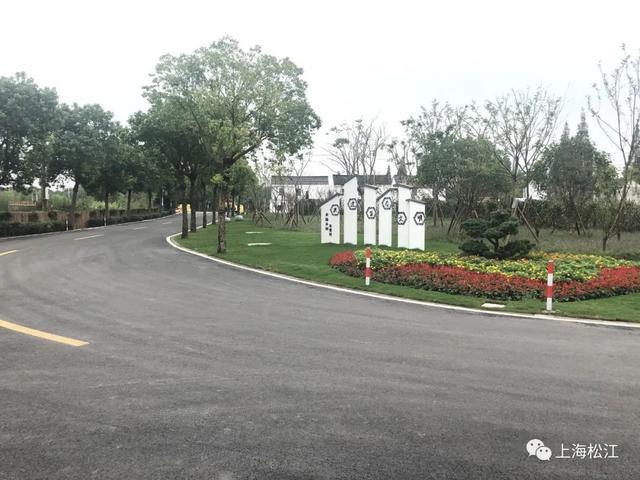 完成浦江之首开放林地建设,完成13条道路大中修、提档升级……石湖荡镇2021年度实事项目出炉→