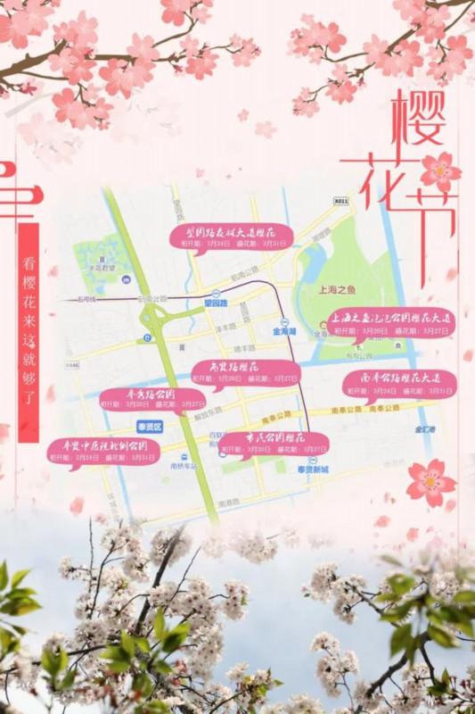 《【无极2平台主管待遇】快收藏这份奉贤赏樱地图,7处观赏点等你打卡》